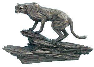 Cheetah on Rock